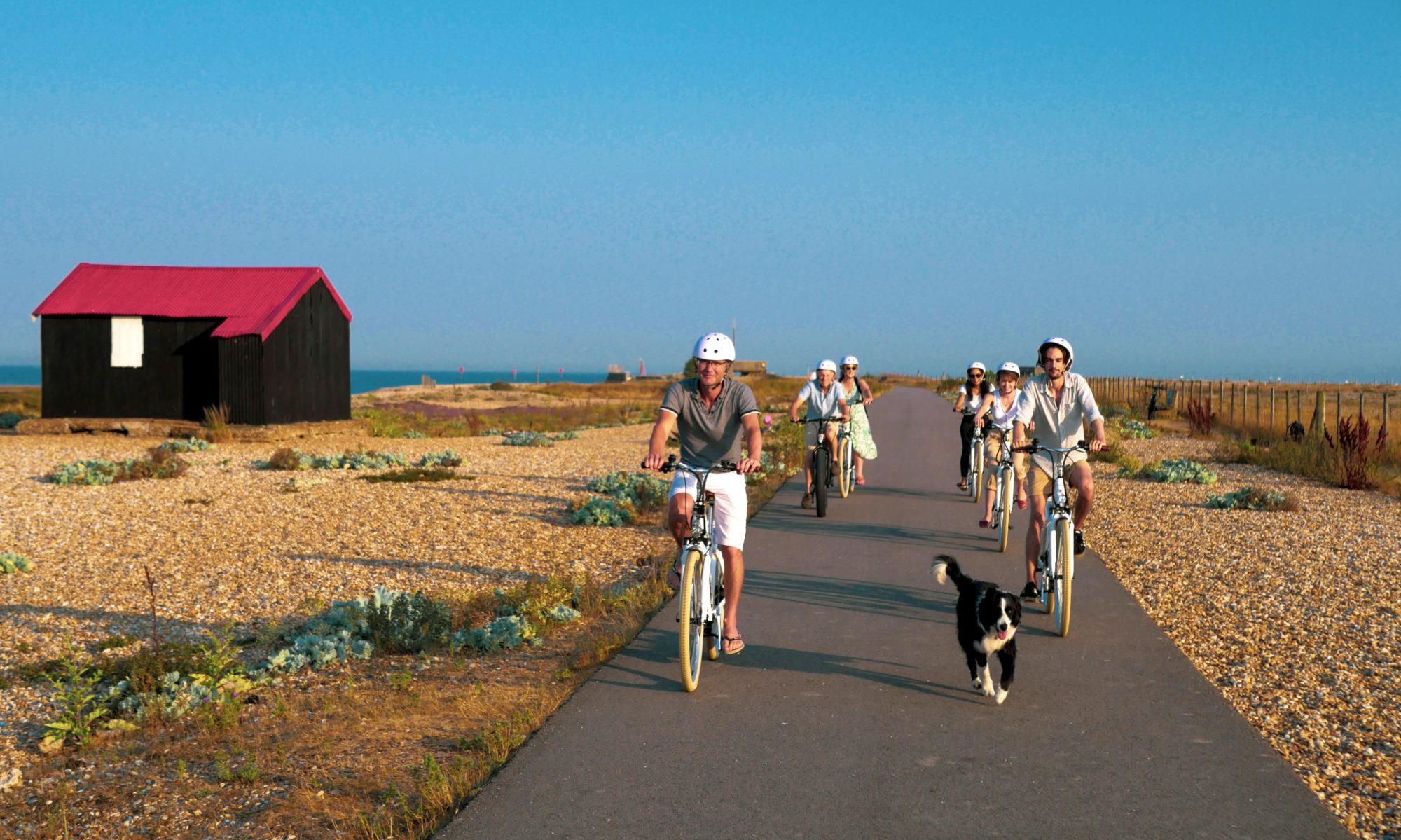 Rye Bay E-bikes